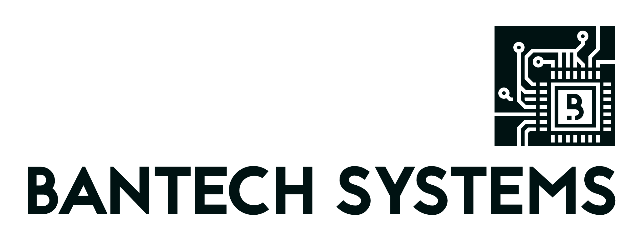 BanTech Systems Merch Store